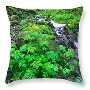 Wahkeena Falls In The Columbia River Gorge Throw Pillow