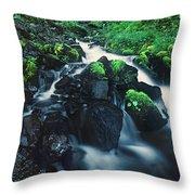 Wahkeenah Falls Columbia River Gorge Nsa Oregon Throw Pillow