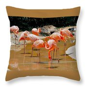 Waikiki Flamingos Throw Pillow