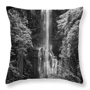 Wailua Falls 2 Throw Pillow