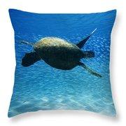 Waimea Turtle Throw Pillow