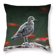 Waiting And Watching Throw Pillow