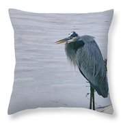 Waiting For A Boat Ride Throw Pillow