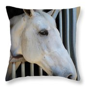 Waiting For A Ride Throw Pillow