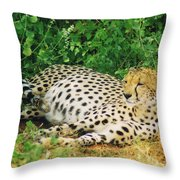 Waiting For Baby Cheetahs Throw Pillow