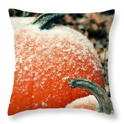 Waiting For Cinderella Throw Pillow