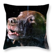 Waiting For Dad To Come Home Throw Pillow
