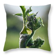 Waiting For Release Throw Pillow