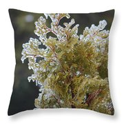 Waiting For Spring - Ice Storm - Closeup 2 Throw Pillow