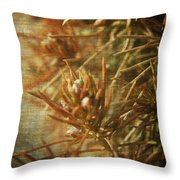 Waiting For Spring 2 Throw Pillow