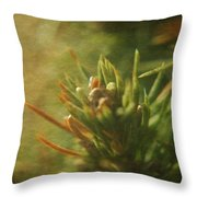 Waiting For Spring 4 Throw Pillow