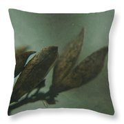 Waiting For Spring 6 Throw Pillow