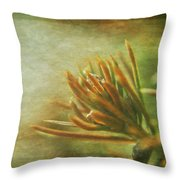 Waiting For Spring 3 Throw Pillow