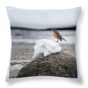 Waiting For Spring Square Throw Pillow