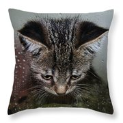 Waiting For Sunshine Throw Pillow