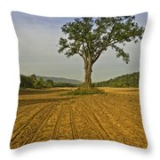 Waiting For The Corn Throw Pillow