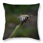 Waiting For The One Last Gust Throw Pillow
