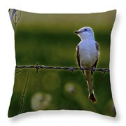 Waiting For The Proper Moment Throw Pillow