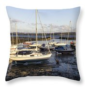 Waiting For The Tide To Turn Throw Pillow