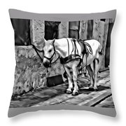 Waiting In The Alleyway Throw Pillow