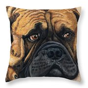 Waiting Bullmastiff Drawing Throw Pillow by Michelle Wrighton