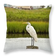 Waiting On Dinner Time Throw Pillow