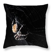 Waiting On Supper Throw Pillow