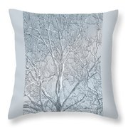 Waiting To Be Clothed Throw Pillow
