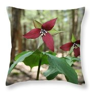 Wake Robin Pair  Throw Pillow