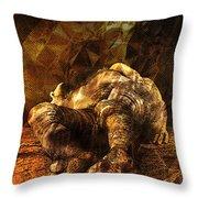 Waking Lazarus Throw Pillow
