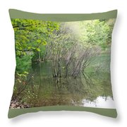 Walden Pond Throw Pillow by Catherine Gagne