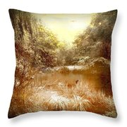 Walden Pond In Pennsylvania Throw Pillow