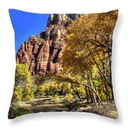 Walk Along The River Throw Pillow