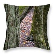 Walk Among The Trees Throw Pillow