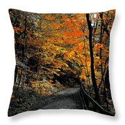 Walk In Golden Fall Throw Pillow