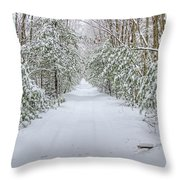 Walk In Snowy Woods Throw Pillow