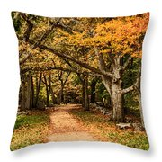 Walk In The Woods Throw Pillow by Jeff Folger