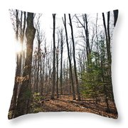Walk In The Woods2 Throw Pillow
