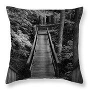Walk Into Nature Throw Pillow