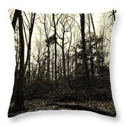 Walk Into Nature Throw Pillow