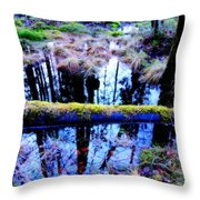 Walk Right Into The Nature's Fairytale With Me  Throw Pillow