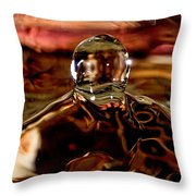Walk Out Of The Water Throw Pillow