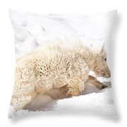 Walk The Right Path Throw Pillow