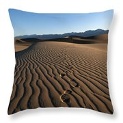 Walk This Way. No. This Way.  Throw Pillow