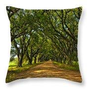 Walk With Me Throw Pillow by Steve Harrington