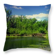 Walk With Me To The Other Side Throw Pillow