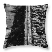 Walking Alone Throw Pillow