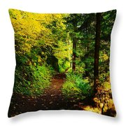 Walking An Autumn Path Throw Pillow