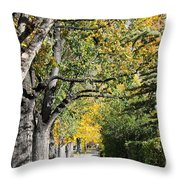 Walking Down Senators Highway Throw Pillow