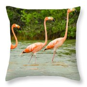Walking Flamingos Throw Pillow